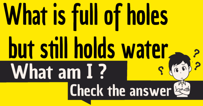 What is full of holes but still holds water riddle