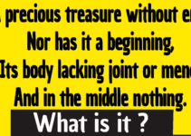 A precious treasure without end riddle answer : A precious treasure without end, Nor has it a beginning, Its body lacking joint or mend, And in the middle nothing.