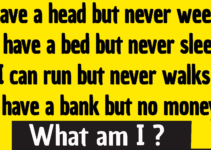 I have a head but never weeps I have a bed but never sleep I can run but never walks I have a bank but no money riddle answer
