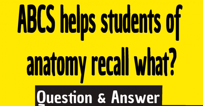 ABCS helps students of anatomy recall what? ,abcs helps students of anatomy recall what answer ,science abcs helps students of anatomy recall what ,abcs helps students of anatomy recall what ,What do abcs helps students of anatomy recall