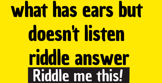 what has ears but doesn't listen ,what has ears but cannot hear ,what has ears but never listens answer ,what has ears but doesn't listen joke ,what has ears but doesn't listen answer