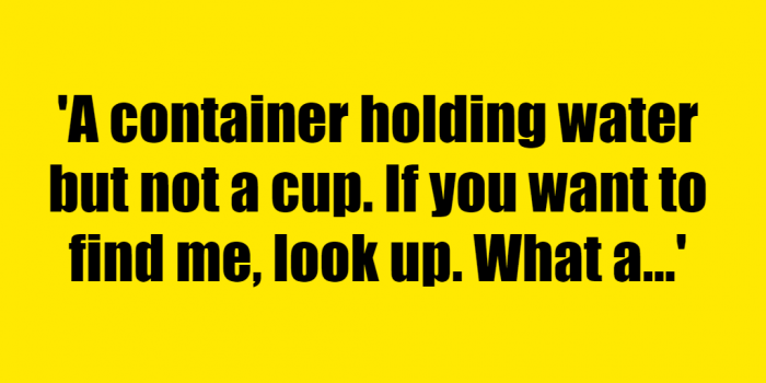A container holding water but not a cup. If you want to find me, look up. What am I? - Riddle Answer
