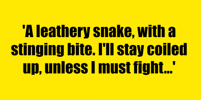 A leathery snake, with a stinging bite. I'll stay coiled up, unless I must fight. - Riddle Answer