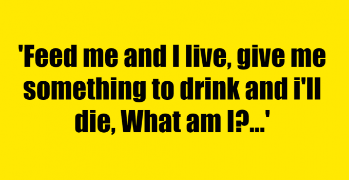 Feed me and I live, give me something to drink and i'll die, What am I? - Riddle Answer