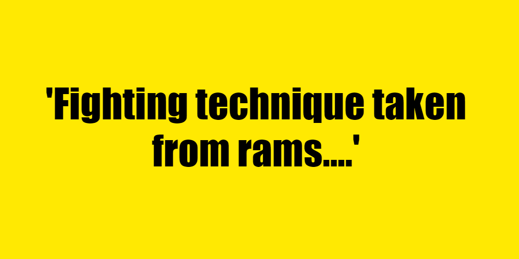 Fighting technique taken from rams. - Riddle Answer