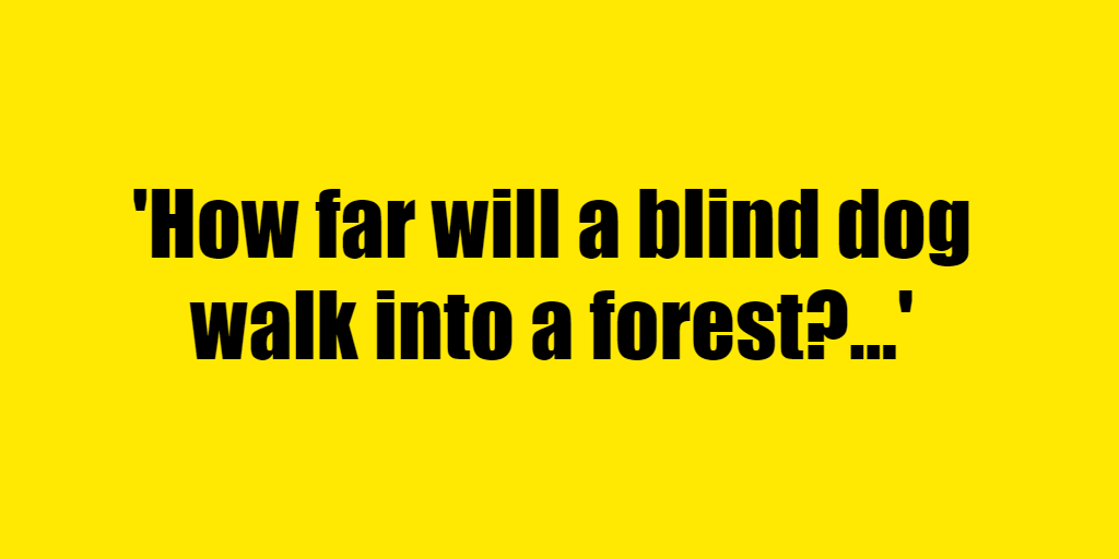 How far will a blind dog walk into a forest? - Riddle Answer