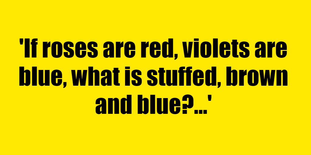 If roses are red, violets are blue, what is stuffed, brown and blue? - Riddle Answer