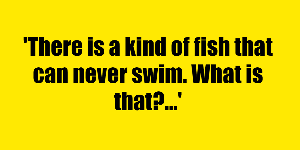 There is a kind of fish that can never swim. What is that? - Riddle Answer