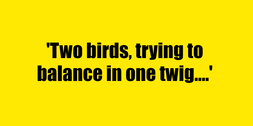 Two birds, trying to balance in one twig. - Riddle Answer