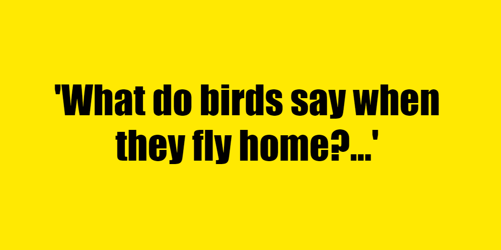 What do birds say when they fly home? - Riddle Answer