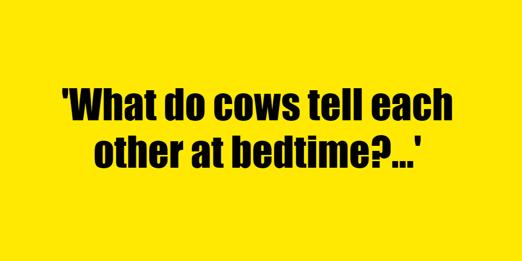 What do cows tell each other at bedtime? - Riddle Answer