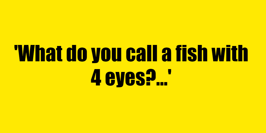 What do you call a fish with 4 eyes? - Riddle Answer