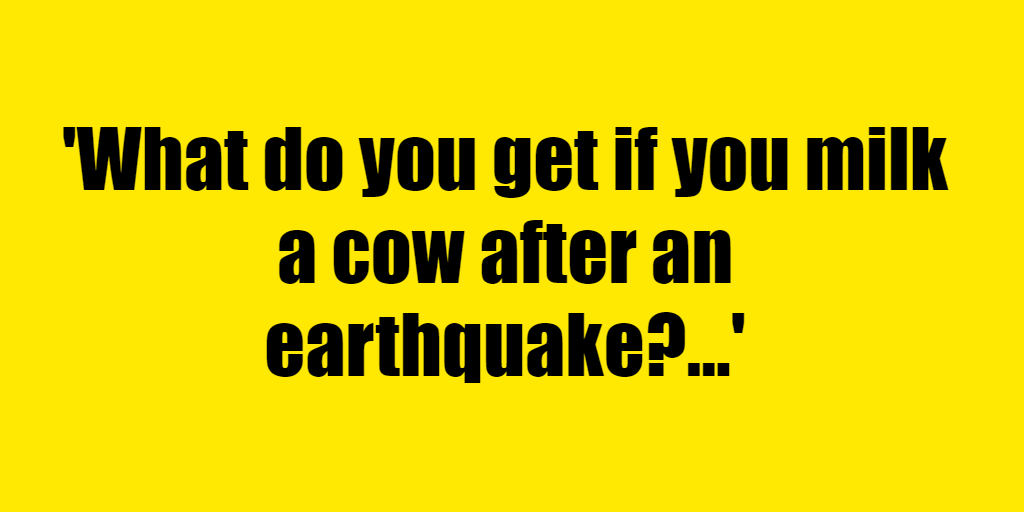 What do you get if you milk a cow after an earthquake? - Riddle Answer