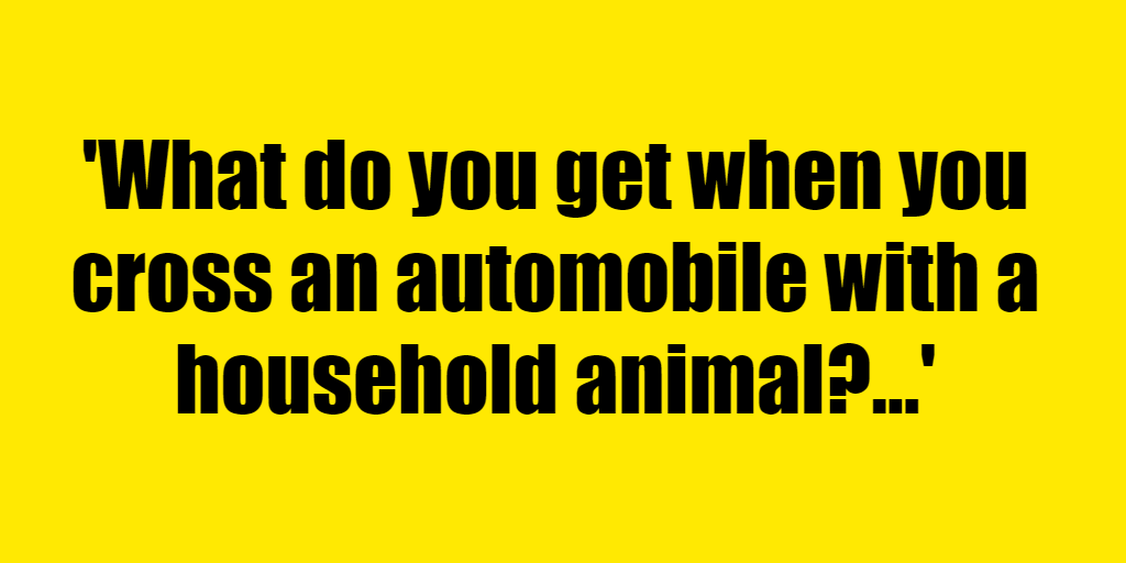 What do you get when you cross an automobile with a household animal? - Riddle Answer
