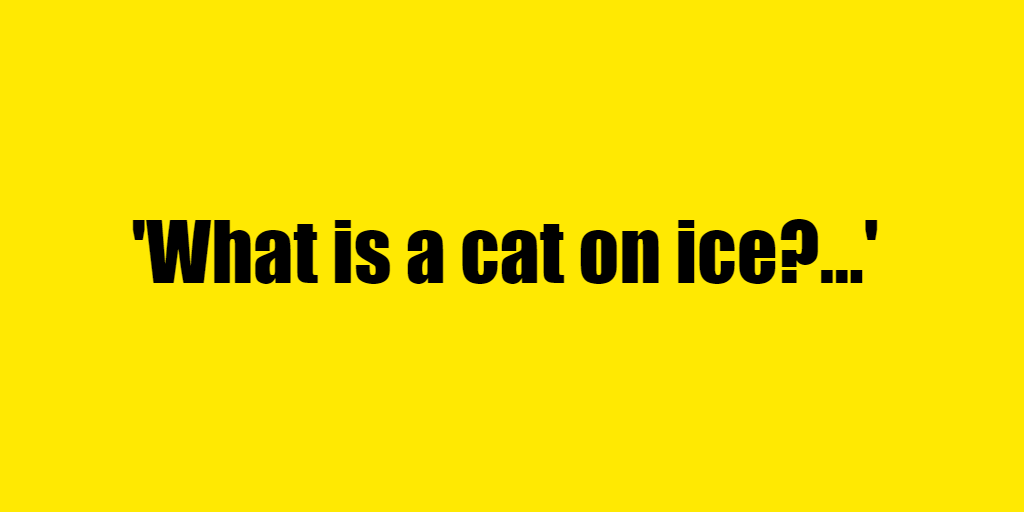 What is a cat on ice? - Riddle Answer