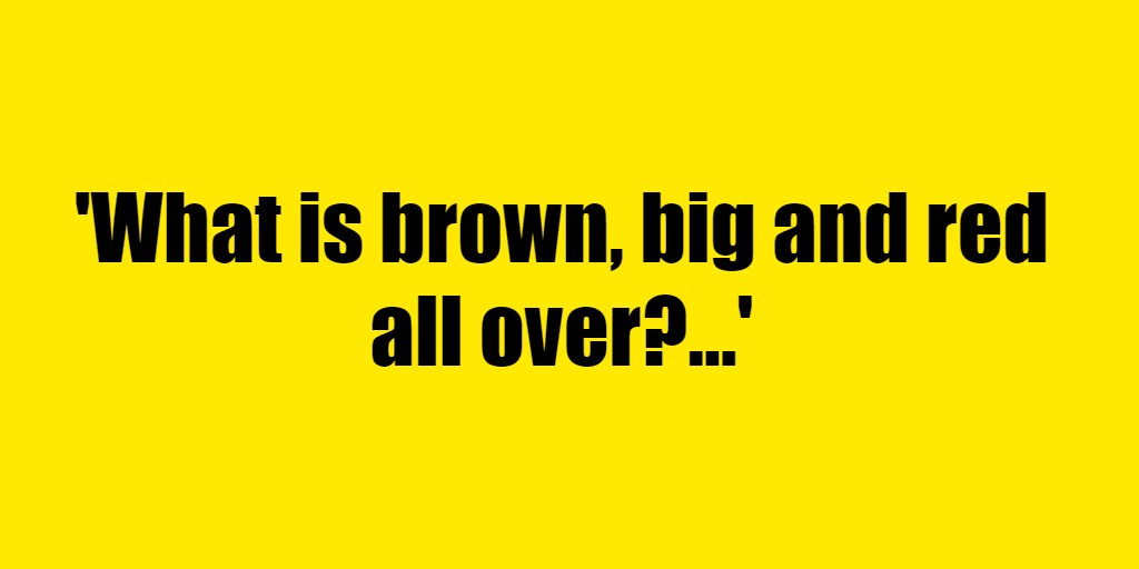 What is brown, big and red all over? - Riddle Answer