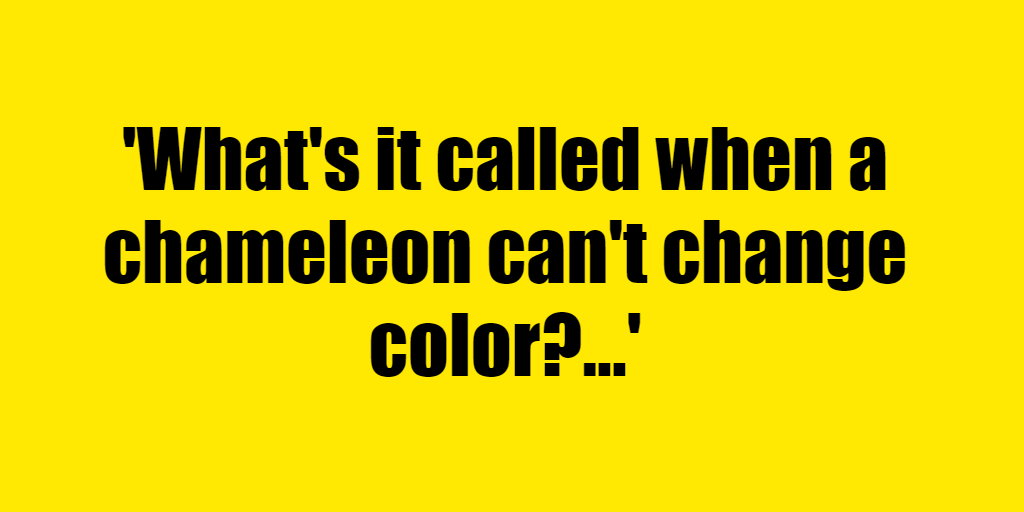 What's it called when a chameleon can't change color? - Riddle Answer