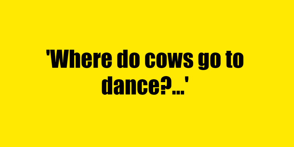 Where do cows go to dance? - Riddle Answer