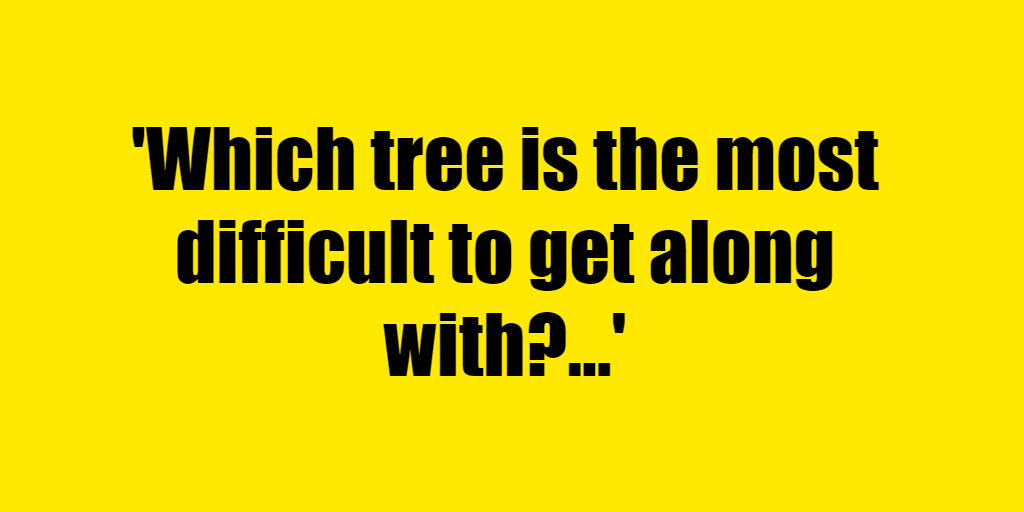 Which tree is the most difficult to get along with? - Riddle Answer