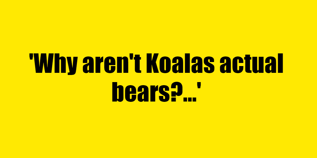 Why aren't Koalas actual bears? - Riddle Answer