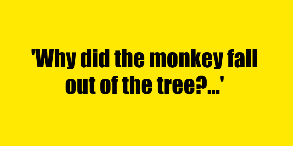 Why did the monkey fall out of the tree? - Riddle Answer