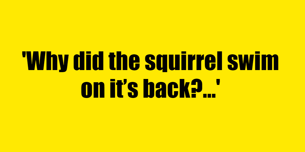 Why did the squirrel swim on it's back? - Riddle Answer