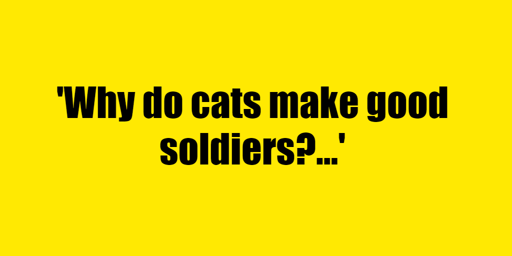 Why do cats make good soldiers? - Riddle Answer