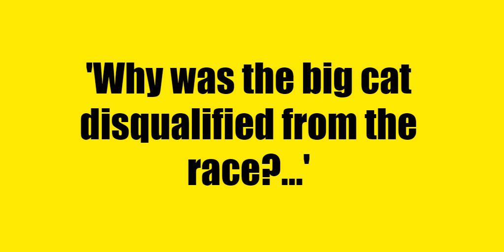 Why was the big cat disqualified from the race? - Riddle Answer