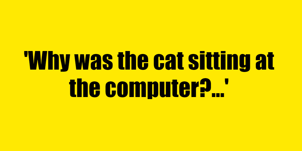 Why was the cat sitting at the computer? - Riddle Answer