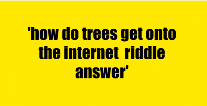 how do trees get onto the internet riddle answer