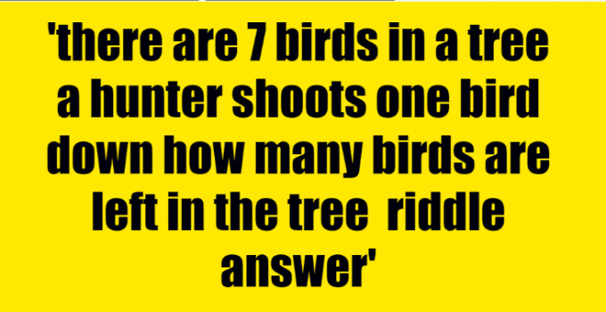 there are 7 birds in a tree a hunter shoots one bird down how many birds are left in the tree riddle answer