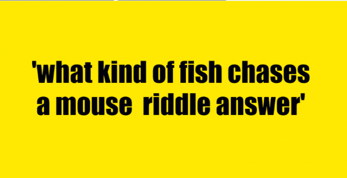 what kind of fish chases a mouse riddle answer