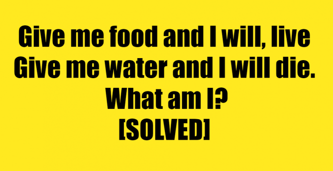 give it food and it will live riddle answer - give me food and i will live riddle answer