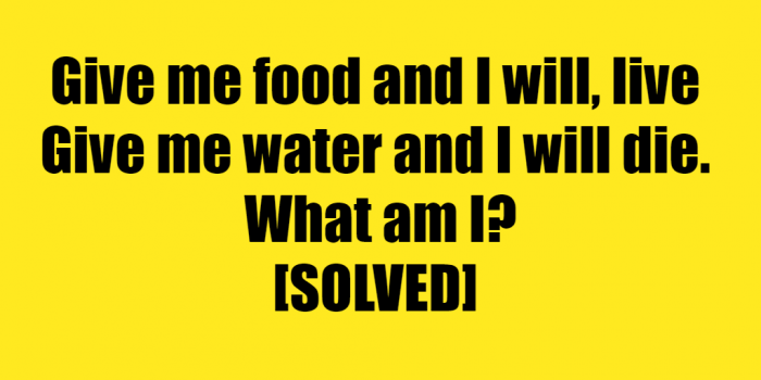 give it food and it will live riddle answer - give me food and i will live riddle answer.png